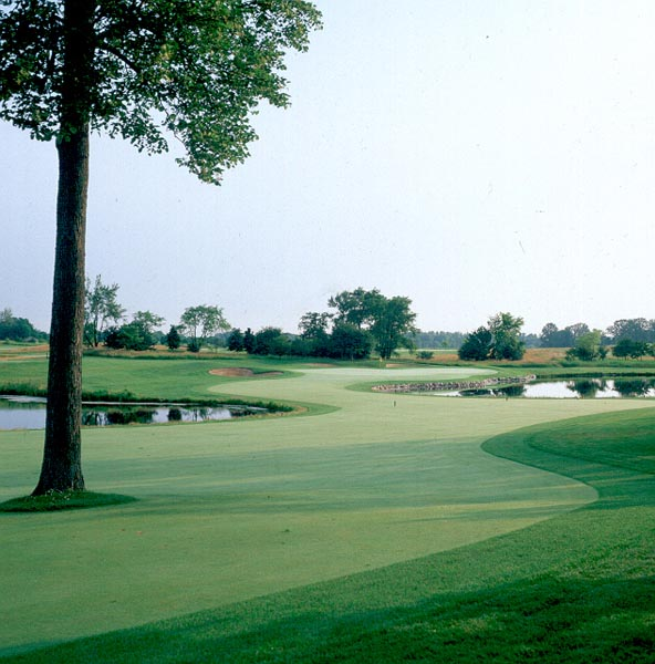 The Merit Club Hole 6