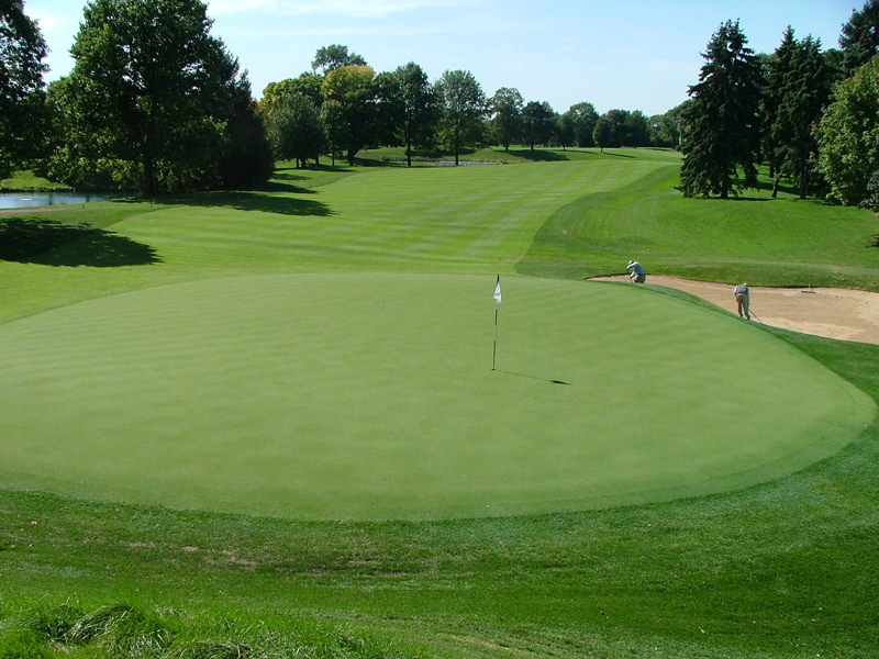 Westmoreland Country Club Finished Green